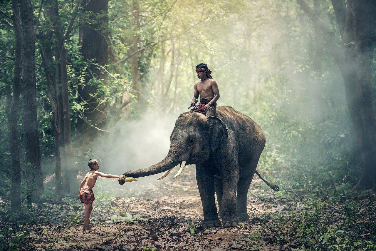 l'Inde comme destination de voyage